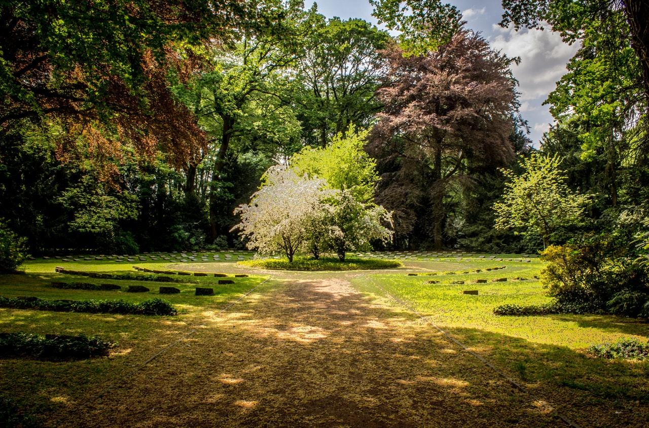 jardin-ombre